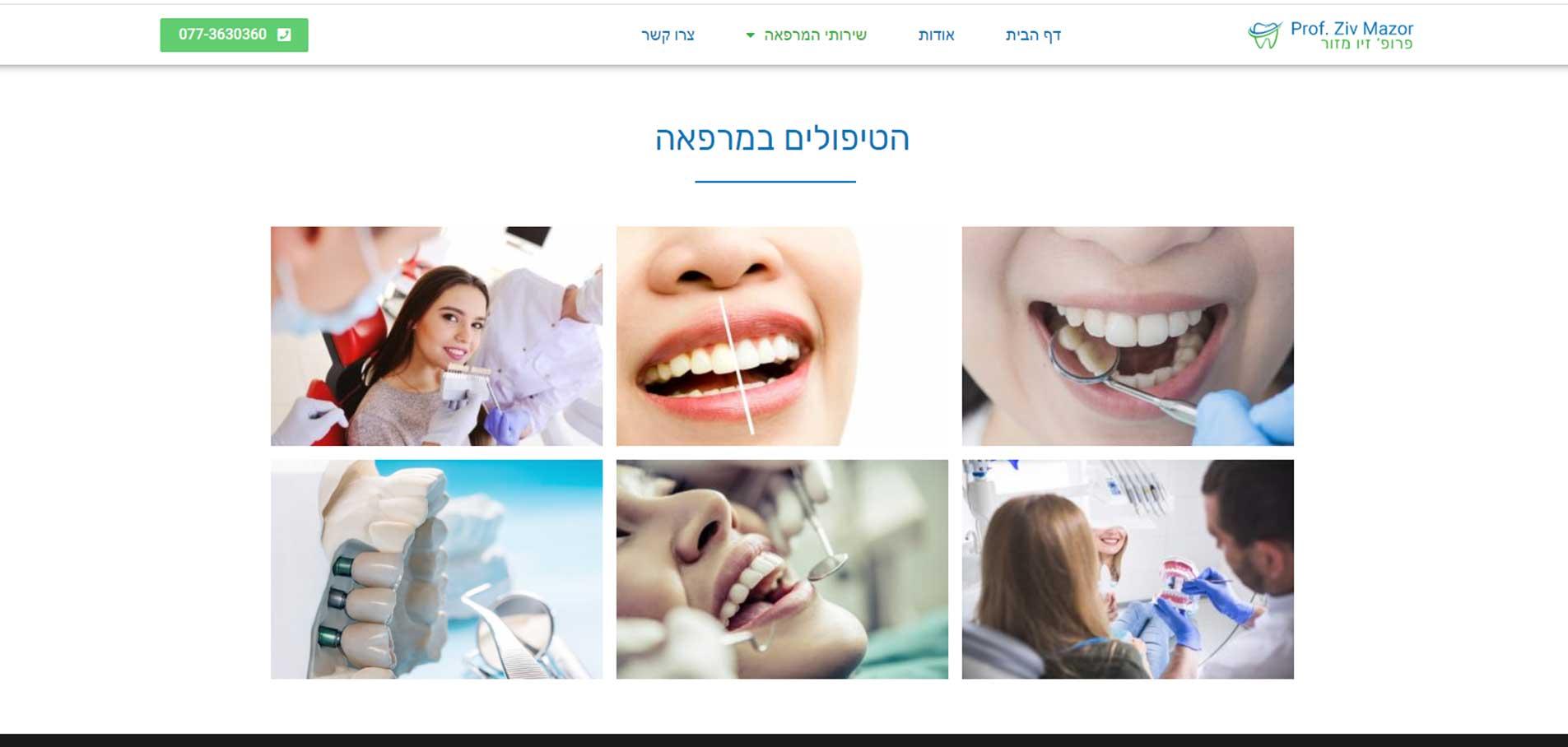 Ziv Mazor website A